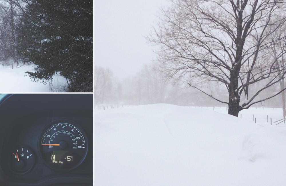 2015_snowy