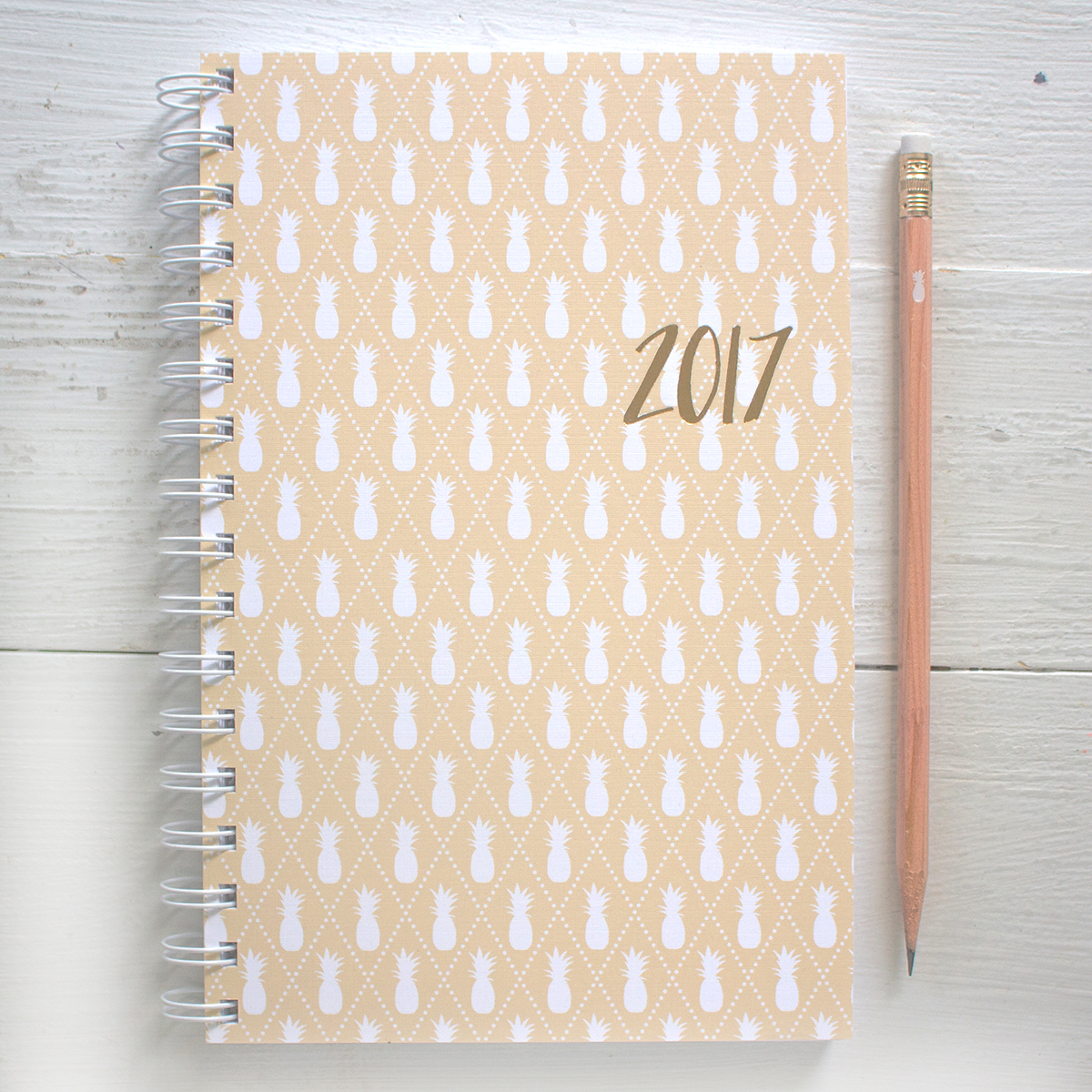 2017 weekly planner with pineapple cover